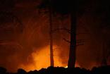 Kazdağları'nda orman yangını! Kontrol altına alınmaya çalışılıyor