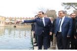 Bakan Fatih  Dönmez Balıklıgöl'ü gezerek, balıklara yem attı