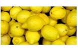 İstanbul'da zam şampiyonu limon