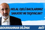 Akit yazarı Abdurrahman Dilipak hem kendi mahallesini hem karşı mahalleyi topa tuttu!