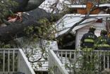 ABD'de Floransa kabusu devam ediyor: Ölü sayısı 14'e yükseldi