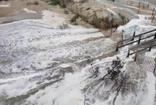 ABD'de Florance Fırtınası en şiddetli seviyeye ulaştı: 800 kilometre alan..