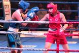 Trabzon'daki boks gecesinde Ukrayna ve Gürcistanlı boksörler havlu attı