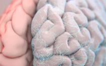 Sağlıklı yaşlanmak için bu önerilere dikkat! İşte beyni genç tutmanın 10 yolu