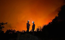 PKK orman yangınlarını böyle ayarlamış! İtiraf geldi: Yangına göre para