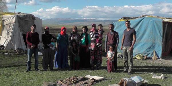 Muşlu hayvan yetiştiricileri aylık 3 bin lira maaşla çoban bulamıyor