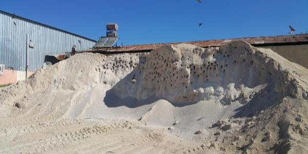 Kırlangıçlar yuva yapınca asfalt şantiyesinde çalışma durduruldu