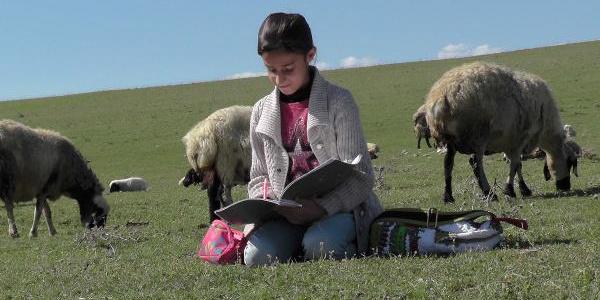 Koyun otlatan Rabia,  projesi birinci gelirse annesine çamaşır makinesi alacak