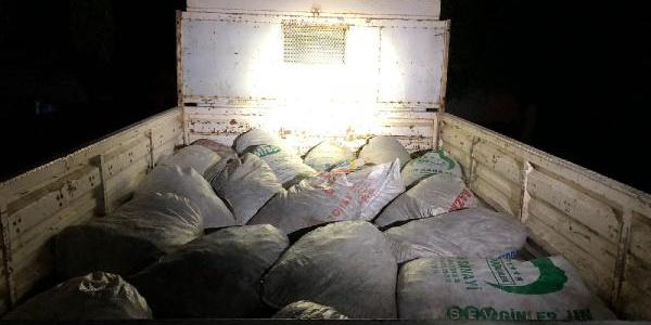 Van'da jandarma kaçak 4,8 ton inci kefali balığına el koydu