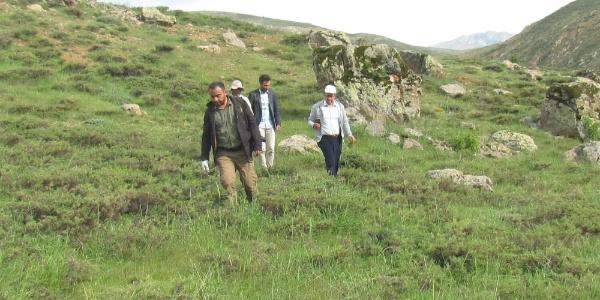 Elazığ'da nesli tükenmekte olan kuş türleri ve sürüngenler belli oldu