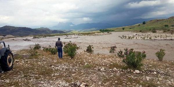 Şırnak'ta 2 çocuk akıntıya kapılan koyunları kurtarmak isterken boğuldu