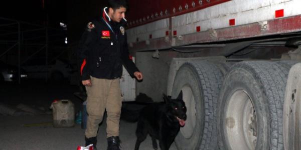 TIR'da yapılan aramada hurma kutularından 21 kilo uyuşturucu çıktı
