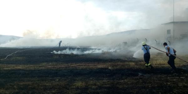 Bodrum'da martı yüzünden 60 dönümlük arazi kül oldu