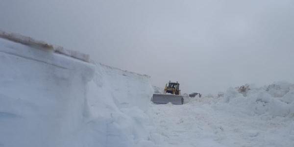 Batı yanarken Artvin'de 4 metrelik karla mücadele