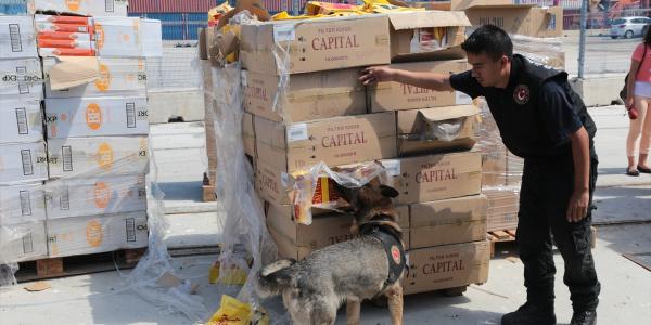 Güvenlik güçleri PKK'ya bir darbe de sigara kaçakçılığından vurdu
