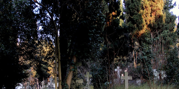Mezarlıkta tartıştığı eşi ve kayınbiraderini vurdu