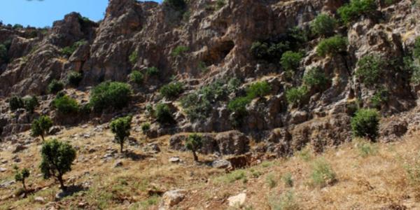 Kandil operasyonu ile rahatlayan köyler şimdi hizmet bekliyor