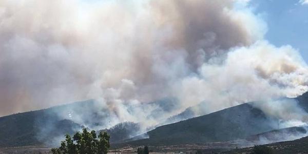 Torbalı'daki yangın yüzünden Kuşadası'na kül yağıyor