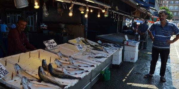 Balıkçılardan müjdeli haber: Türkiye palamuta doyacak