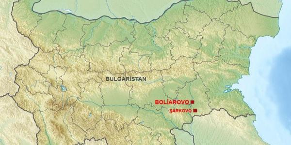 Bulgaristan'nın Türkiye sınırında 4 bin küçük baş hayvan itlaf edildi