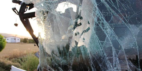 Yolcu otobüsü büyükbaş hayvan taşıyan tırla çarpıştı: 22 yaralı