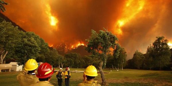 Yunanistan'daki orman yangınlarında ölü sayısı 50 oldu