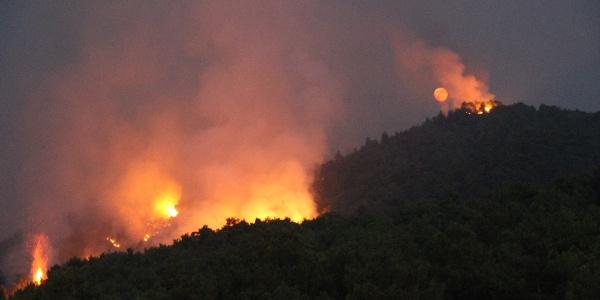 Hatay'ın Arsuz ilçesinde çıkan  yangın kısmen kontrol altına alındı