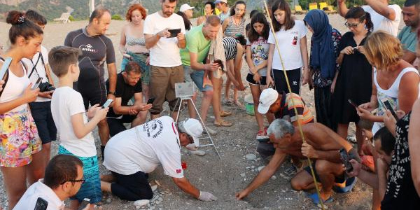 Antalya Kemer'de  binlerce caretta caretta denize ulaşmak için zamanla yarışıyor.