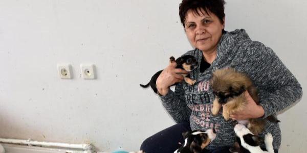 Evinde 100'ün üstünde hayvan besleyen kadın ölü bulundu