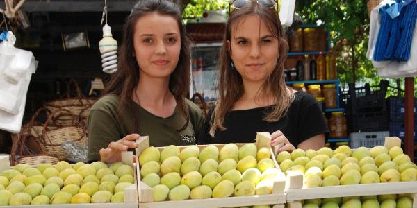 Silifke'de 3 liradan satılan incir, üreticisini sevindirdi
