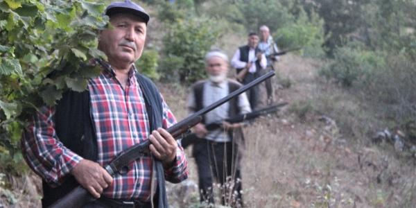 Bursa'da köylüler domuza karşı tüfekle nöbet tutuyor