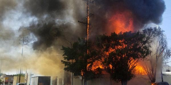 ABD'nin Los Angeles kentinde yangın paniği