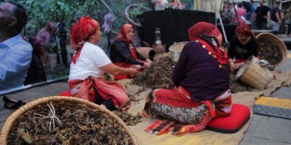 Giresun'daki fındık festivalinde Nurettin Canikli rest çekti
