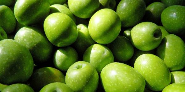 Zeytin ve zeytinyağı ihracatında tarihi rekor hazırlığı