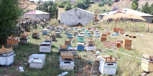 37 kovan arısı telef olan Ağrılı arıcıya 40 kovan arı desteği