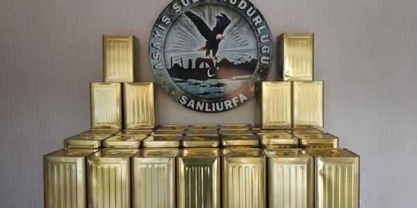 Şanlıurfa'da 3.5 ton balı gasbeden sahte polisler tutuklandı