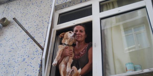 Tekirdağ'da inşaat işçileri ile mahalleli köpek yüzünden birbirine girdi