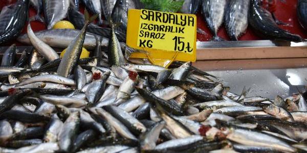 Çanakkale'de sardalye fiyatı bir haftada yarı yarıya düştü