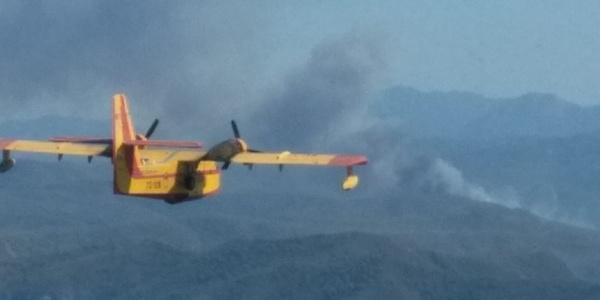 Marmaris'te 20 hektar orman  kaza yapan araç yüzünden yandı