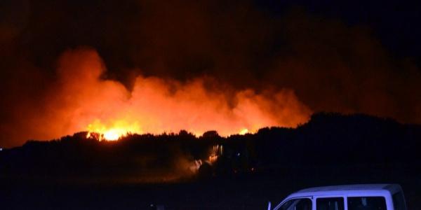 Aydın Didim'de 6 ayrı noktada yangın dehşeti