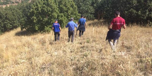 Aşkale'de ekipler dağ taş demeden kayıp 2 çocuk annesini arıyor