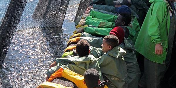 Moritanya'da 1000 Türk balıkçısı 52 tekne ile balık avında