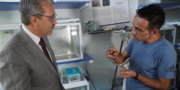 Ege Üniversitesi'nde yılan zehrinden ilaç yapımı için kritik çalışma