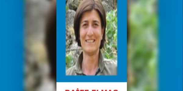 Bingöl'te etkisiz hale getirilen 5 teröristten biri 1,5 milyon ödüllü kadın terörist çıktı