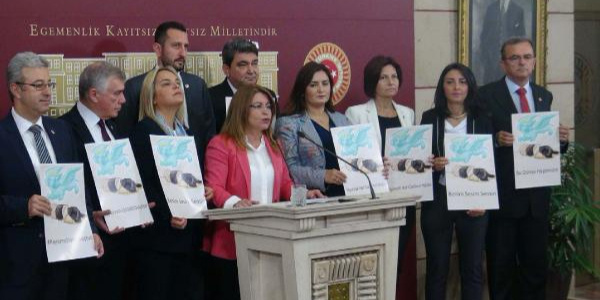 CHP, hayvan hakları kanun teklifi için diğer partilerden destek istedi