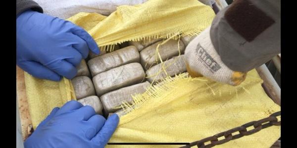 Van'da narkotik köpeği Alfa kamyonette 132 kilo eroin buldu
