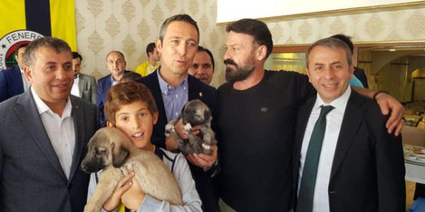 Ali Koç'a, Sivas'ta 'kangal' yavruları hediye edildi