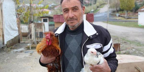 Tavuk çiftliği kurdu, kendi işinin patronu oldu