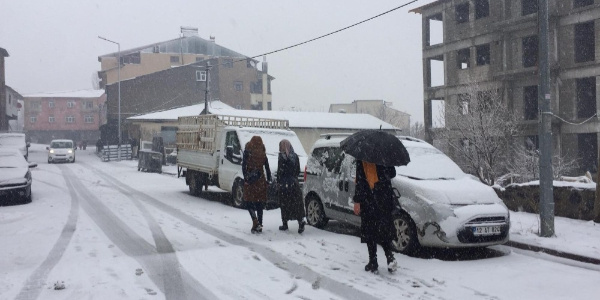 Bingöl ve Tunceli'nin ilçeleri karla kaplandı