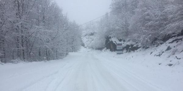 Ordu'da kar kalınlığı 25 cm'ye ulaştı